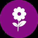 flower-icon_150x150